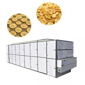 Industrial Hot Air Fruit Vegetable Fish Dehydrating Dryer