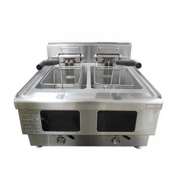 Electric Large Capacity Deep Fat Fries Fryer for Sale